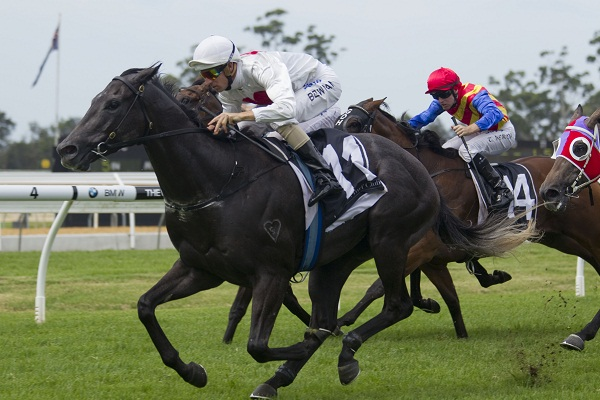 Charge Account (Hugh Bowman, outside, white colours and cap) wins at Warwick Farm on February 9, 2013 - photo by Martin King / Sportpix - copyright
