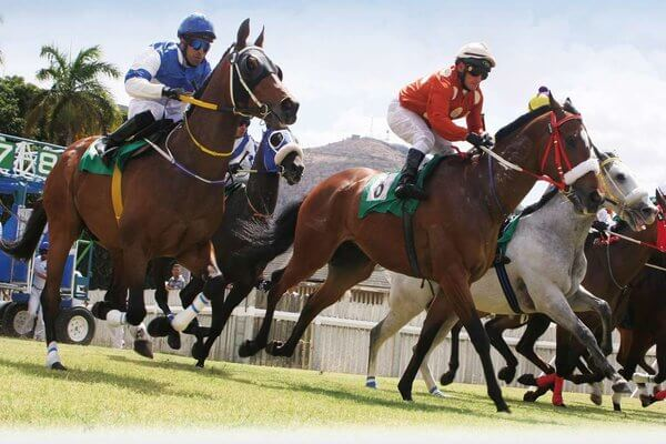 Points Imperative to Win Horse Racing and Gaining Profit