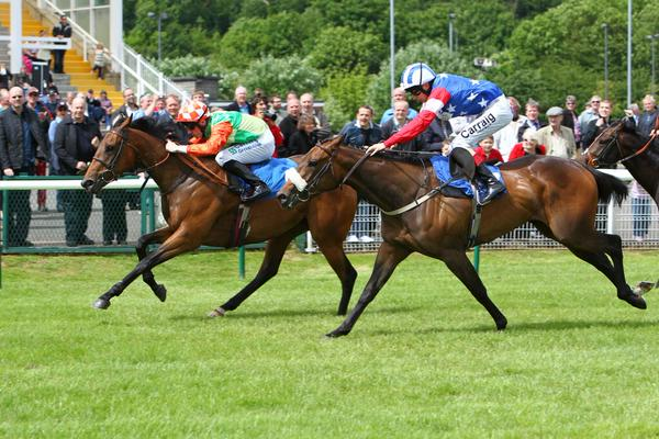 Horse Racing and Gaining Profit